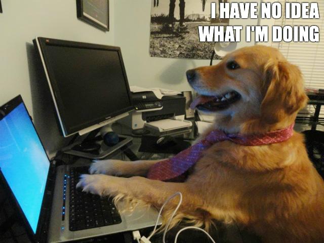 Clueless Live Tweeting Dog