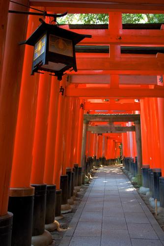 Kyoto (Japan) - Thousands of Torri