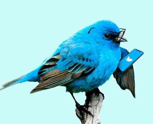 Twitter - Blue bird with glasses holding a smartphone with Twitter's logo