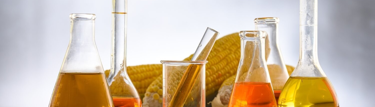 Biofuel and agriculture